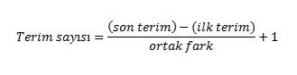terim say�s�